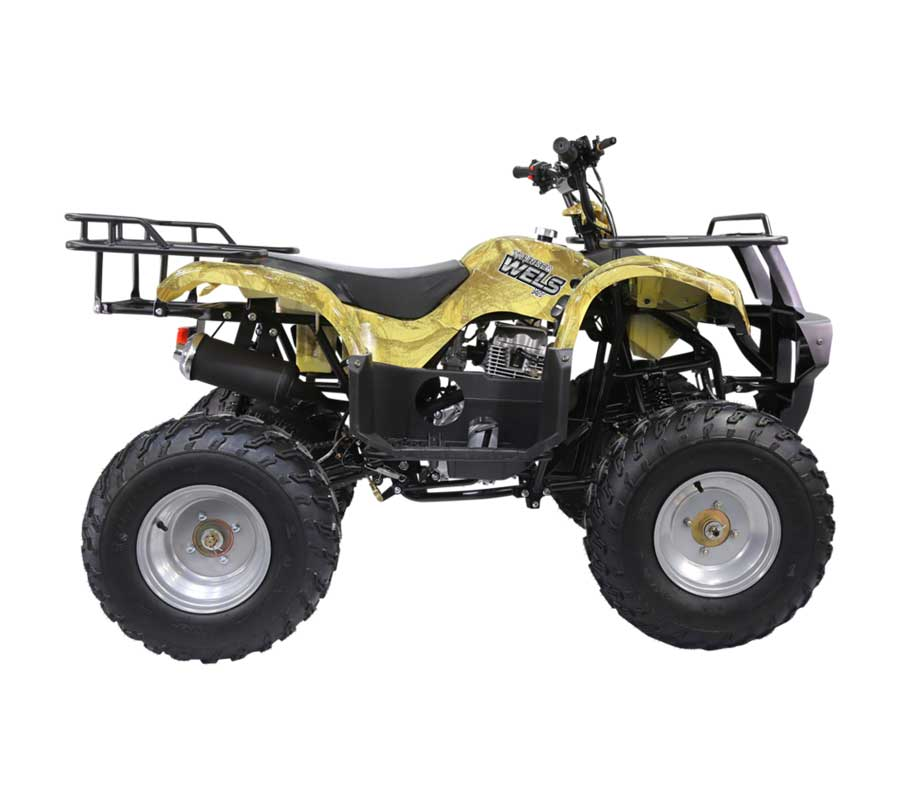 Квадроцикл WELS ATV Thunder 200 - купите в Крыму