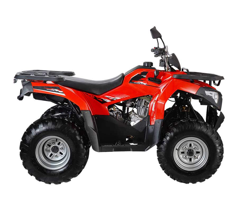 Квадроцикл WELS ATV Bison 225 - купите в Крыму
